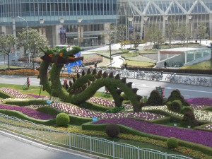 Dragons grow in Shanghai